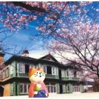 Decole Concombre - Doll Goods - Traveling Cat Sakura Trip 2021 Series - Kobe Sakura Singing Cat