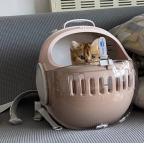 Moboli WE Shoulder Travel Cat Capsule - Pink